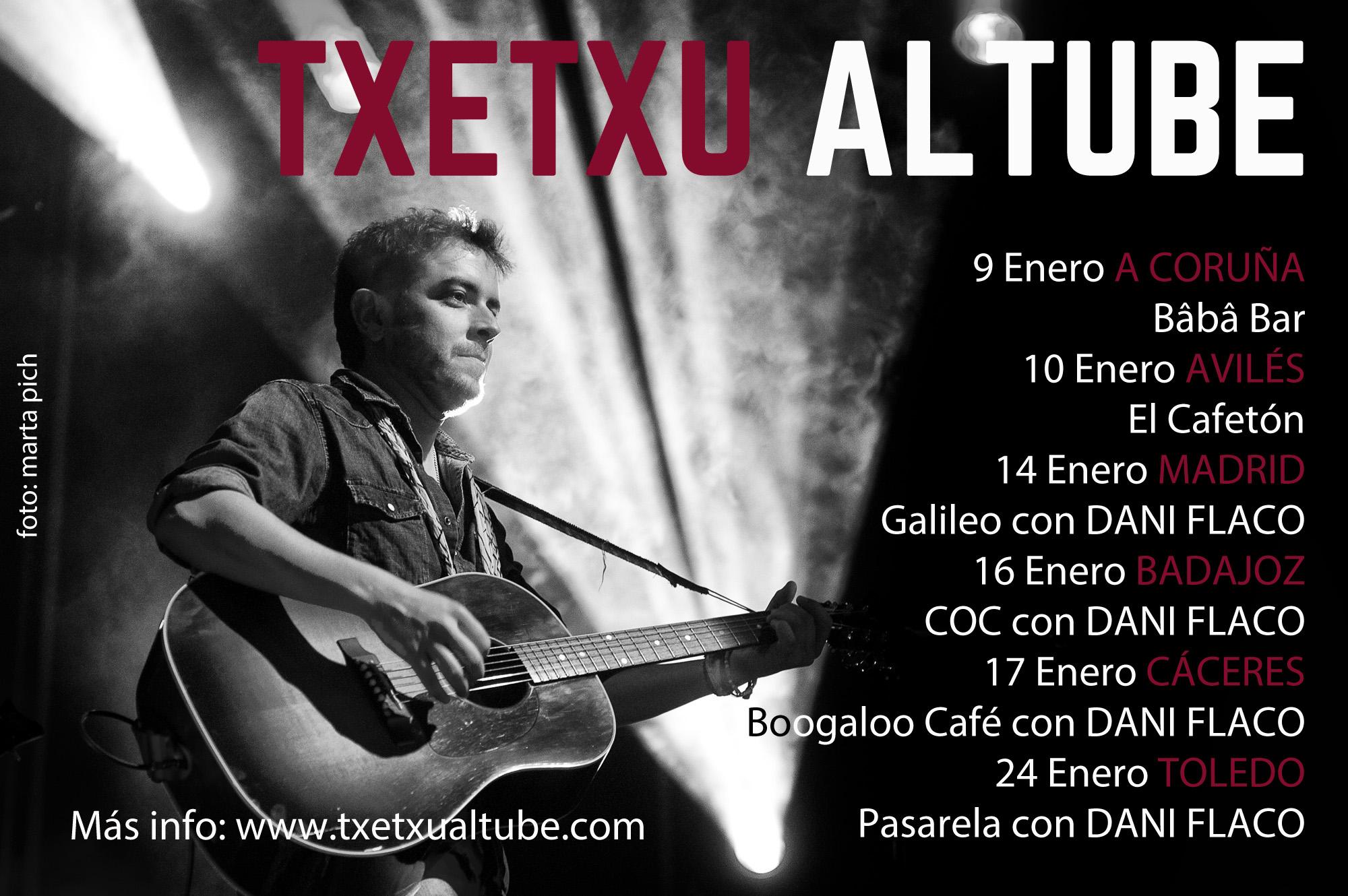 conciertos enero 2015